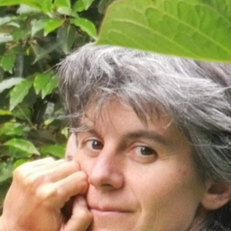 Laia Colomer
